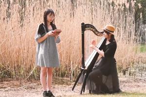 Canon (GECKO Kalimba /Harp version)—Play by April Yang